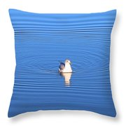 Center Of Attention  3247 Throw Pillow