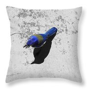 Center Of Attention- Scrub Jay Throw Pillow