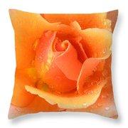 Center Of Orange Rose Throw Pillow