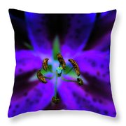Center Of The Asiatic Lily Throw Pillow