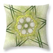Center Of The Star Throw Pillow