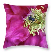 Centered Throw Pillow