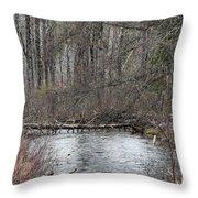 Centipede Bridge Throw Pillow
