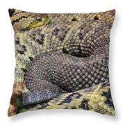Central American Rattlesnakee Throw Pillow
