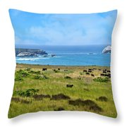Central Coast Panorama - Hwy 1 Throw Pillow by Lynn Bauer