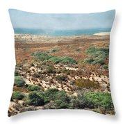 Central Coast Sand Dunes II Throw Pillow