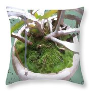 Central Fixation Throw Pillow by Eikoni Images