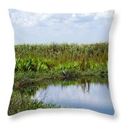 Central Florida Backwater Throw Pillow