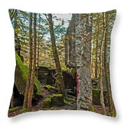 Central Hoist Walls Throw Pillow