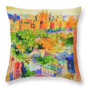 Central Park From The Carlyle Throw Pillow