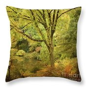 Central Park In Autumn Texture 5 Throw Pillow