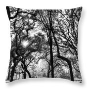 Central Park In Black And White Throw Pillow