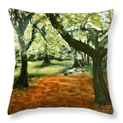 Central Park In New York City Throw Pillow