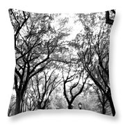 Central Park Nyc In Black And White Throw Pillow