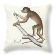 Central Yellow Baboon, Papio C. Cynocephalus Throw Pillow