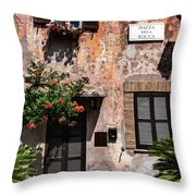 Century Or Two Throw Pillow