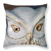 Ceramic Owl. Throw Pillow