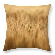 Cereal Field Throw Pillow