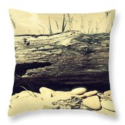 Chafer Throw Pillow