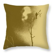 Chaffinch Tint Threshold Throw Pillow