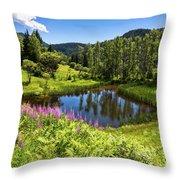 Chairi Lake Throw Pillow