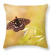 Chalcedon Butterfly Throw Pillow