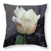 Chalky Throw Pillow