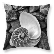 Chambered Nautilus Shell  On River Stones Throw Pillow
