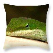 Chameleon 2 Throw Pillow
