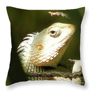 Chameleon Up-close 1 Throw Pillow