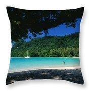 Champagne Beach Throw Pillow