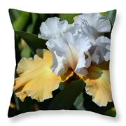 Champagne Iris Throw Pillow