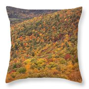 Champlain Lookout Throw Pillow