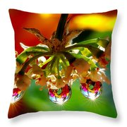 Chandelier From The Rain Drops Throw Pillow