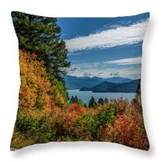 Change In The Air Throw Pillow