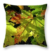 Changing Colors Throw Pillow