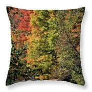 Changing Colours Of The Fall Throw Pillow