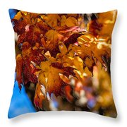 Changing Maples Throw Pillow