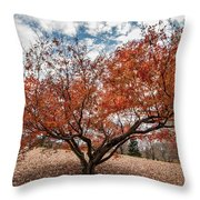 Changing Of Seasons Throw Pillow