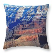 Changing Spectacle Throw Pillow