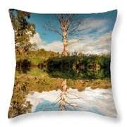 Changing The Seasons Throw Pillow