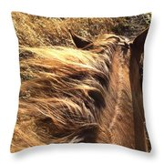 Changing With The Grass Throw Pillow