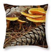 Chanterell Mushrooms  Throw Pillow