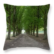 Chantilly France Street Scenes Throw Pillow