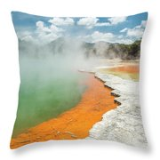 Champagne Pool Throw Pillow