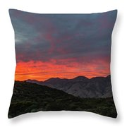 Chaparral Dreams Throw Pillow