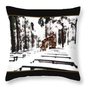 Chapel Of The Woods In A Snowy Glow Throw Pillow