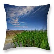 Chapin Beach Throw Pillow