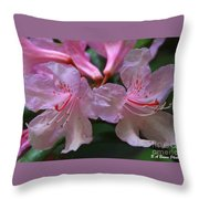 Chapmans Rhododendron Throw Pillow