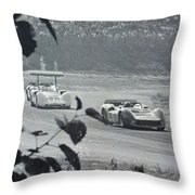 Chapparal In Corner Throw Pillow